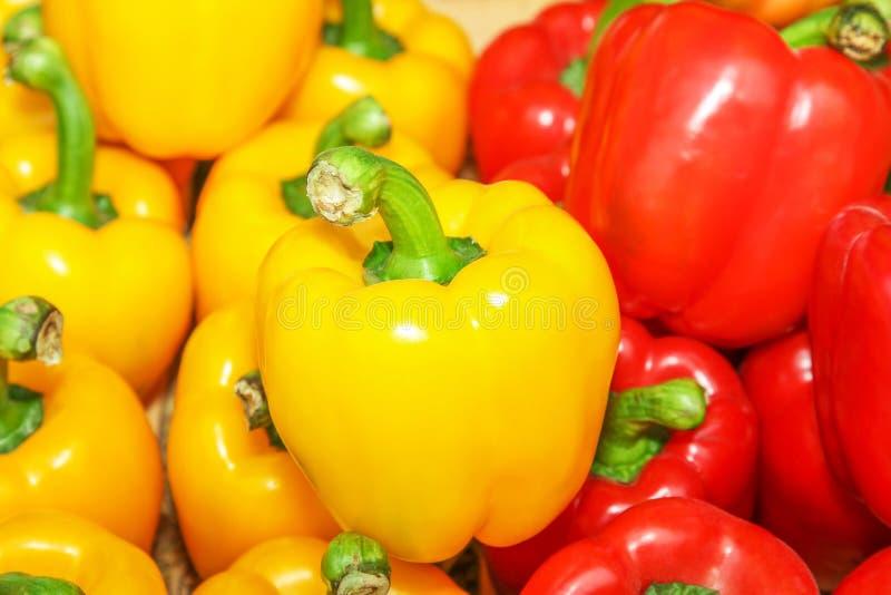 Gul och röd spansk peppar. royaltyfria bilder
