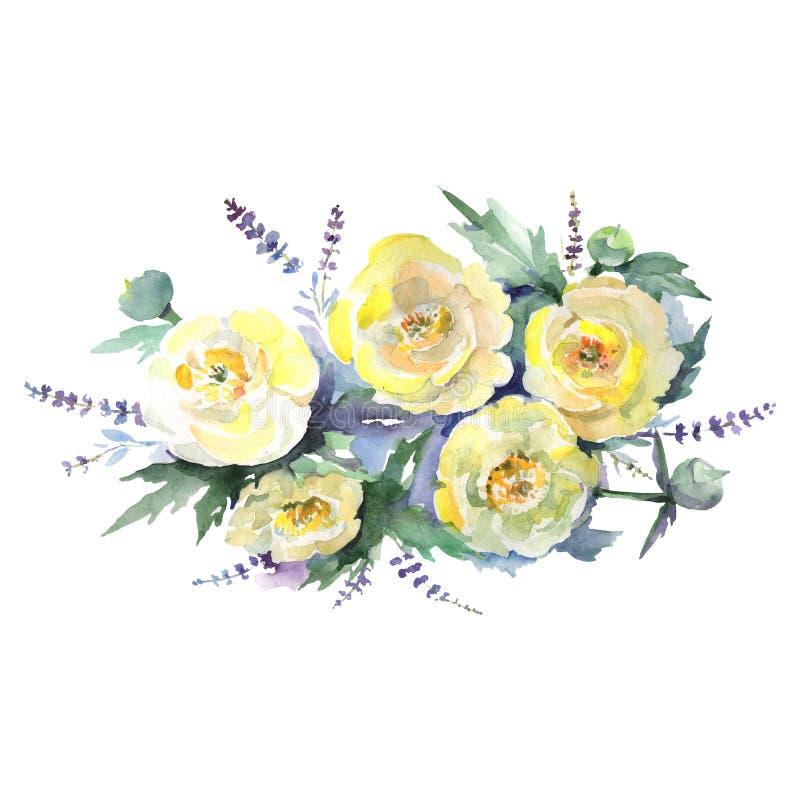 Gul ranunculus bouquet florala botaniska blommor Bakgrundsuppsättning för vattenfärg Element för illustration av isolerade bukett stock illustrationer