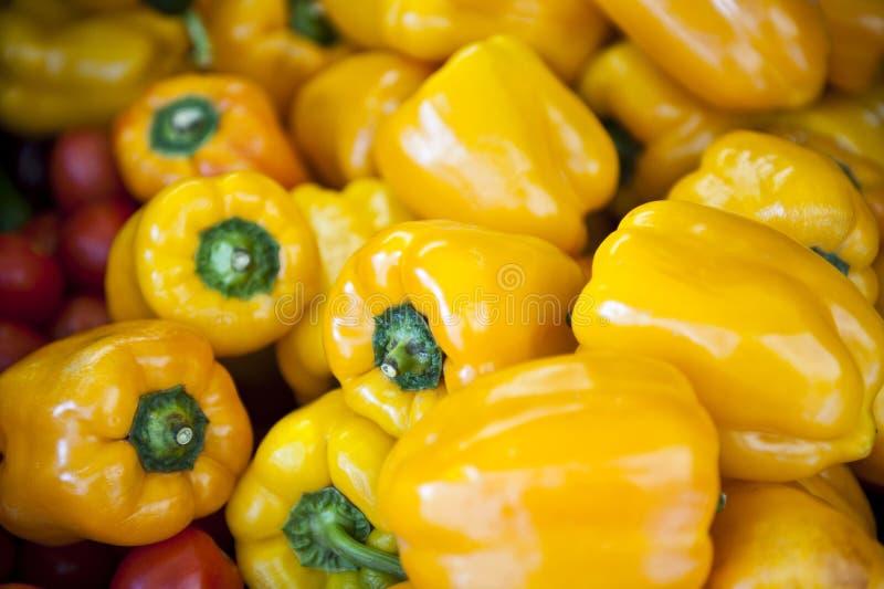 Gul spansk peppar arkivbilder