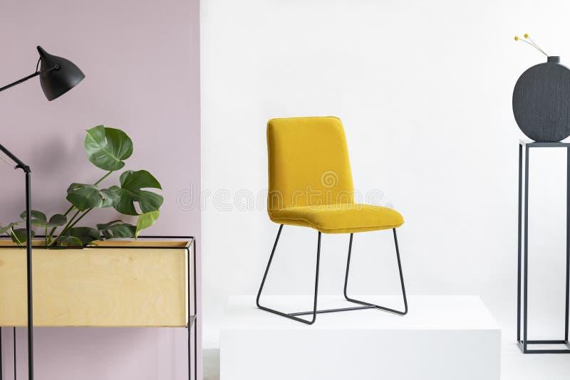 Gul stol för moderiktig sammet i den vita och pastellfärgade rosa inre royaltyfri fotografi