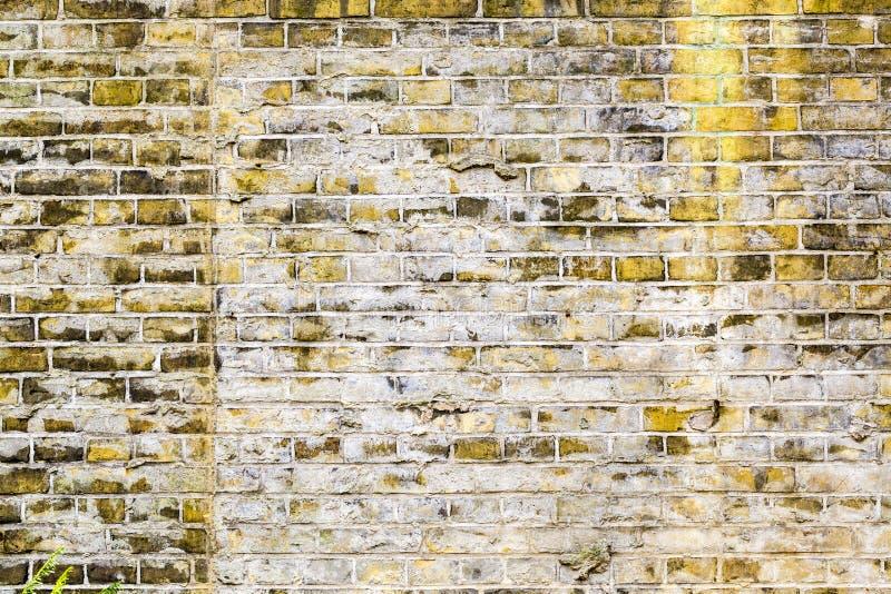 Gul tegelstenvägg för bakgrunder arkivbild