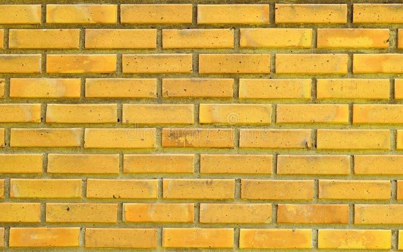 Gul tegelstenvägg för texturbakgrund arkivfoto