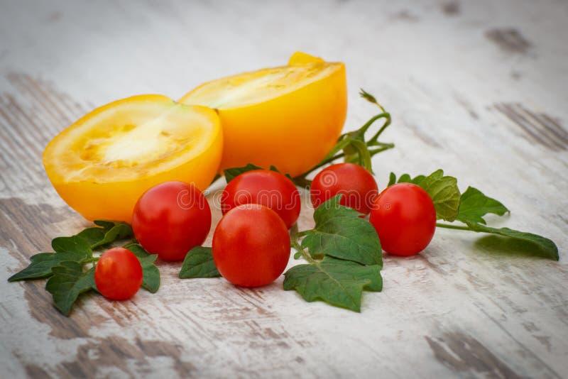 Gul tomat och körsbärsröda tomater med gröna sidor i trädgård på solig dag arkivfoton