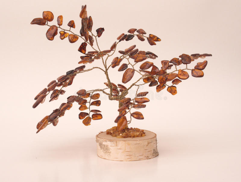 gul tree royaltyfri bild