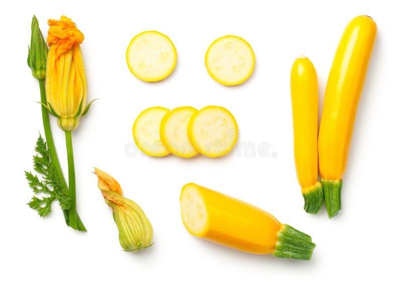 Gul zucchini med bladet och blomman som isoleras på vita Backgroun royaltyfria foton