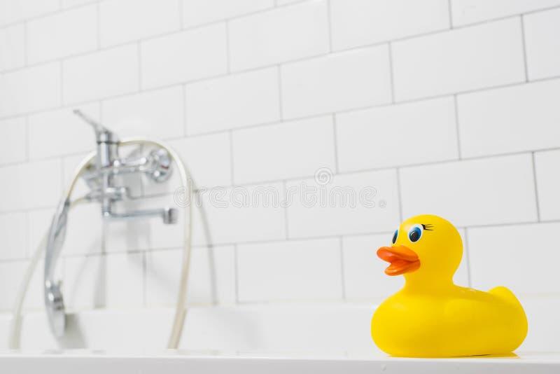 Gula ankungeleksaker för närbild i badrummet fotografering för bildbyråer