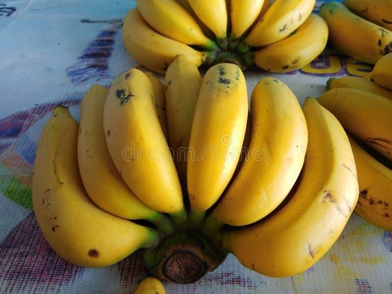 Gula bananer på tabellen arkivbilder