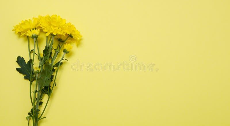 Gula blommor p? mallvykortet med isolerad bakgrund f?r kopia utrymme Valentin och mors dag Utrymme f?r b?sta sikt och kopierings  royaltyfria foton