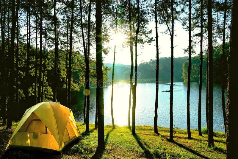 Gula campa tält sörjer in trädskogen vid sjön på Pang Oun royaltyfri foto