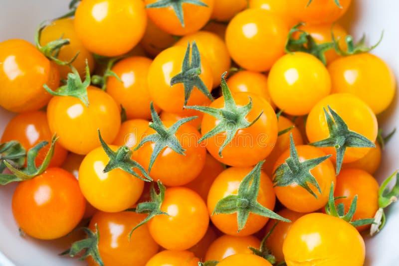 Gula Cherrytomater royaltyfri fotografi
