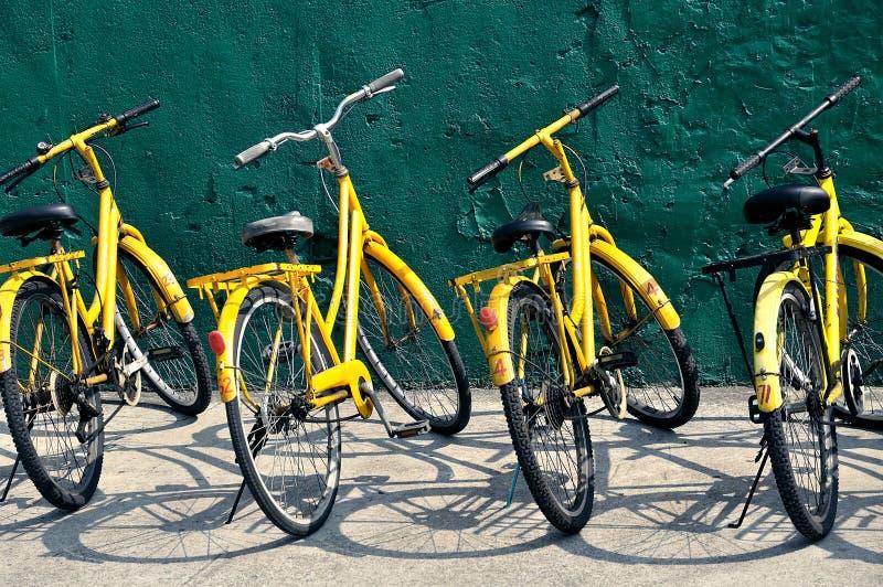Gula cyklar fotografering för bildbyråer