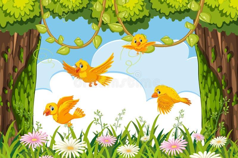 Gula fåglar i djungelplats stock illustrationer