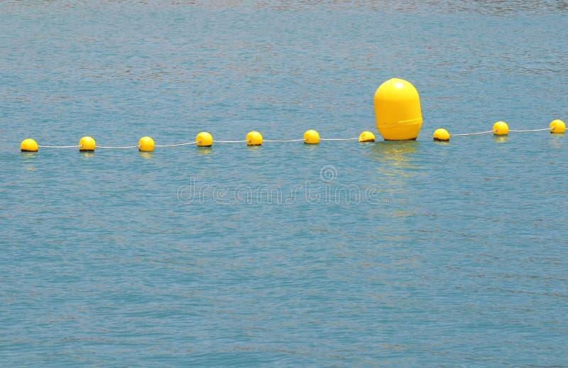 Gula Floaters arkivbilder