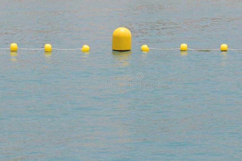 Gula Floaters royaltyfria foton