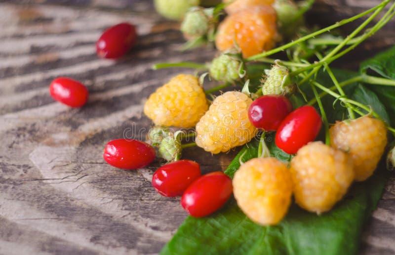 Gula hallon- och cornelfrukter med blad på gammal texturerad träbakgrund Organisk bärCloseup royaltyfria bilder