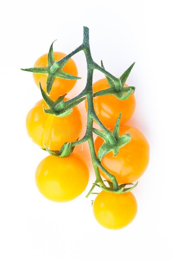 Gula körsbärsröda tomater fattar på vit arkivbild