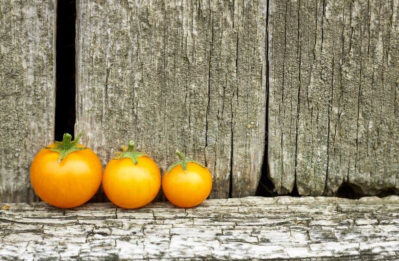 Gula körsbärsröda tomater framme av lantlig träbakgrund för gammal sjaskig tappning royaltyfri bild