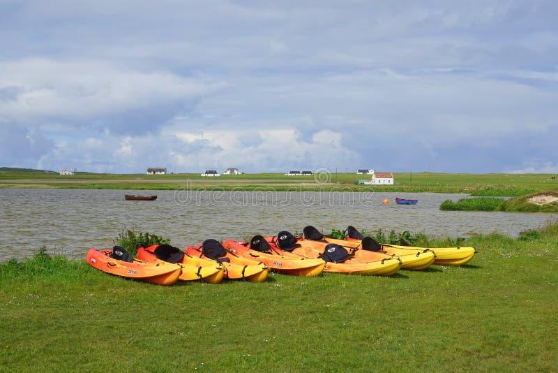Gula kajaker ställde upp på kust av sjön royaltyfri fotografi