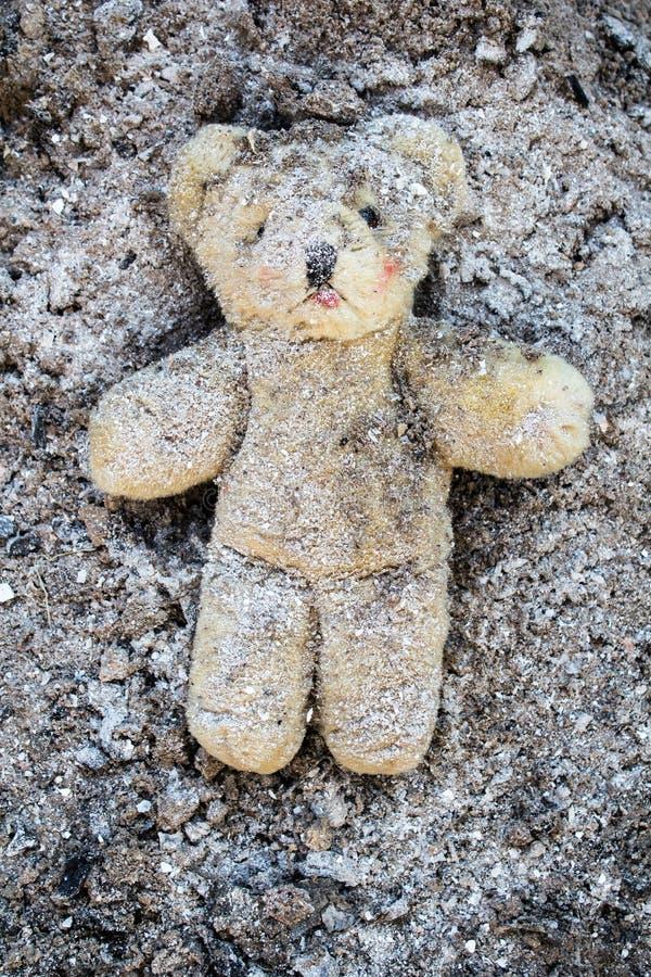 Gula lögner för nallebjörn sårade i en hög av askaen royaltyfria foton