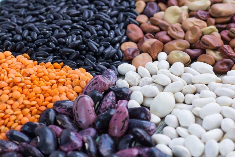 Gula linser, vit, lila, brun närbild för njurebönor royaltyfria foton