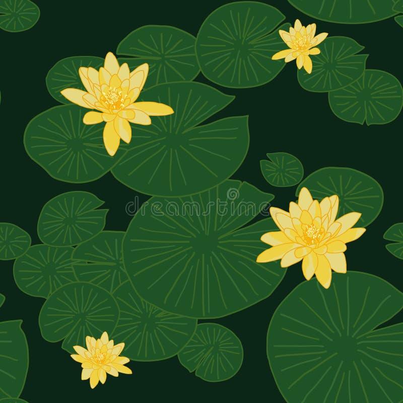 Gula lotusblommor i dammet Sjönäckrors Shadeless prydnad vektor illustrationer