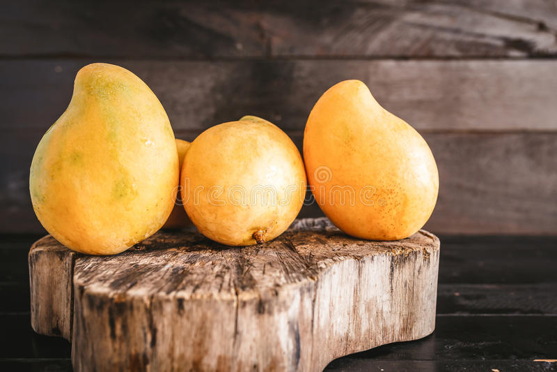 Gula mango royaltyfri foto