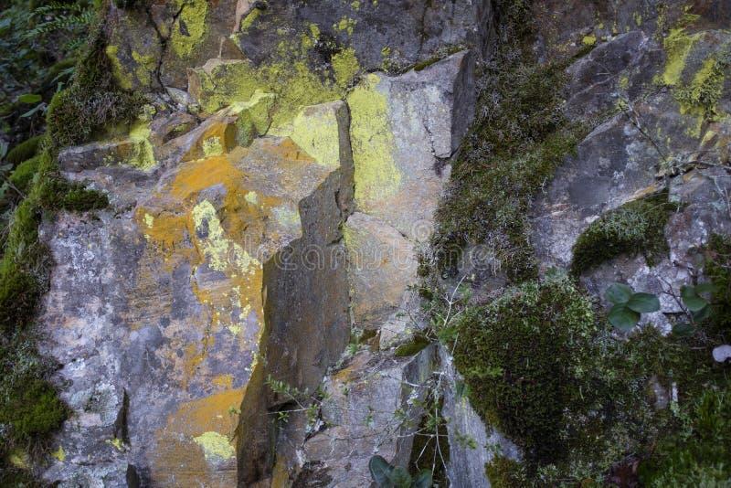 Gula markeringar i stenansikte på vandringspåret arkivfoto