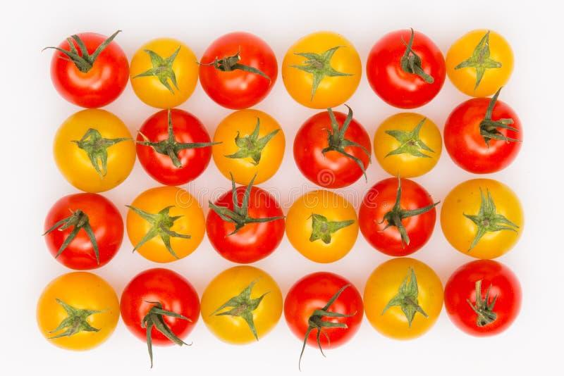 Gula och röda tomater fotografering för bildbyråer