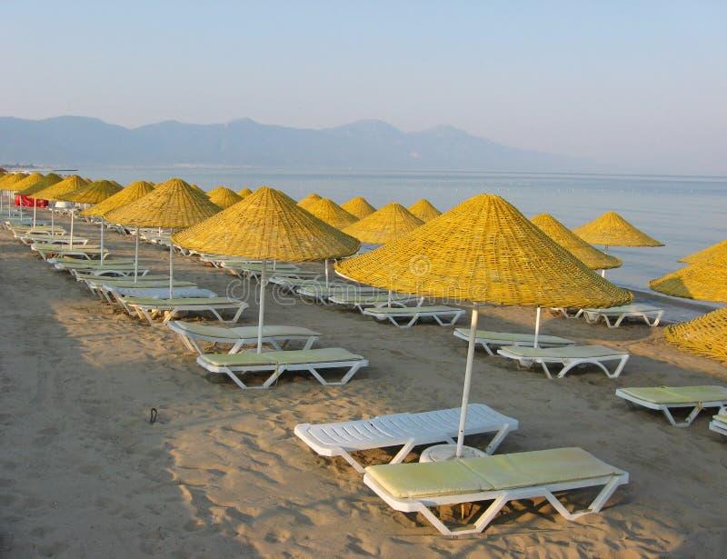 Gula paraplyer och sunbeds på stranden royaltyfri fotografi
