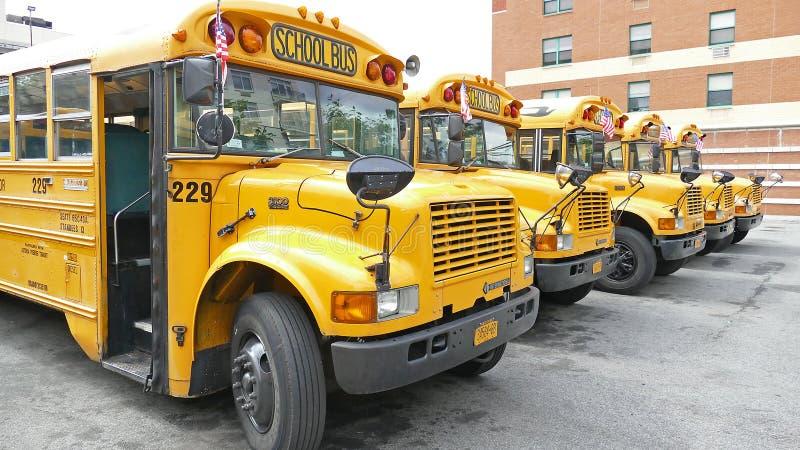 Gula skolbussar i en borggård i Astoria, Queens royaltyfri fotografi