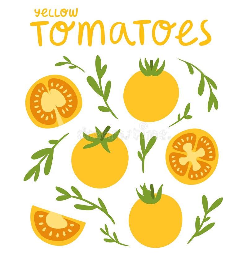 Gula tomater stock illustrationer