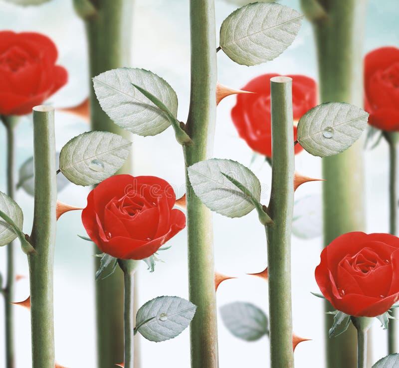 Gula trädgårds- rosor fotografering för bildbyråer
