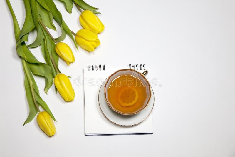 Gula tulpan med anteckningsboken med ett te på en vit bakgrund arkivbild