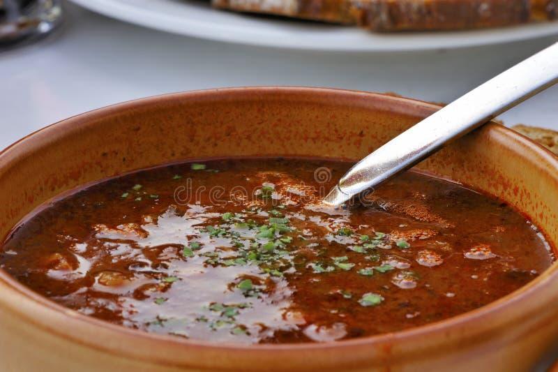 Gulasch-Suppe lizenzfreie stockfotos