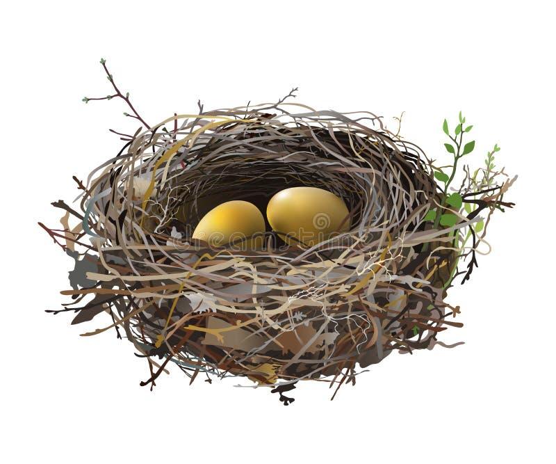 Guld- ägg i rede för fågel` s stock illustrationer