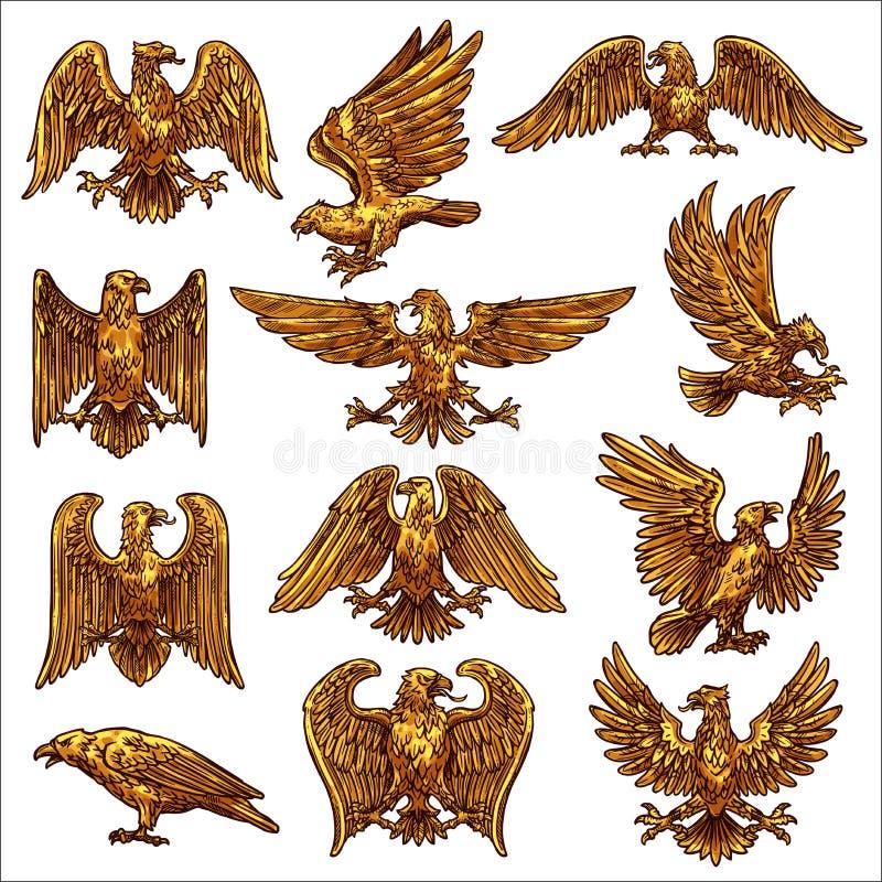 Guld- örn, hök, falk, healdic fåglar av rovet stock illustrationer
