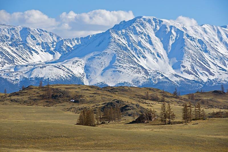 Guld- berg av Altai royaltyfria foton
