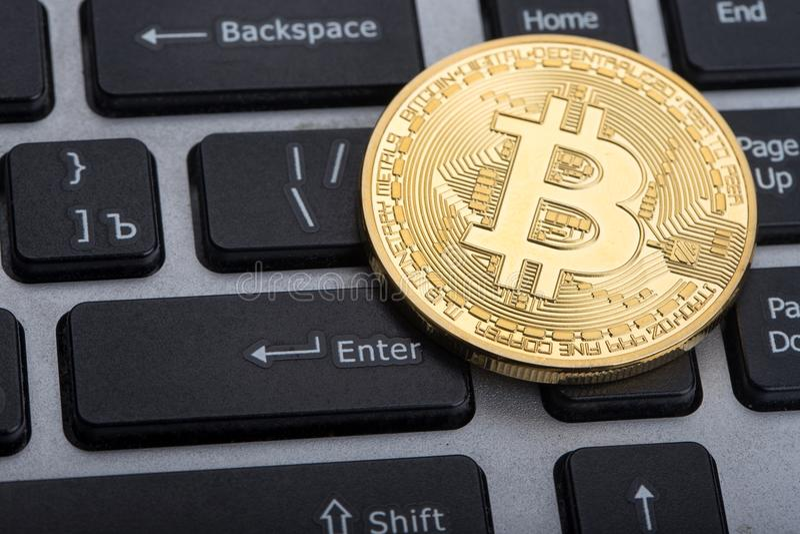 Guld- Bitcoin royaltyfria bilder