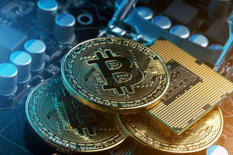 Guld- Bitcoin Cryptocurrency på ett datorbräde Blåsa utskjutande Meloe Begreppet av cryptocurrencyen med mynt, bitcoin på en dato royaltyfria bilder