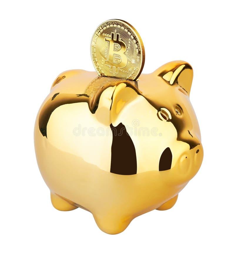 Guld- Bitcoin på en piggy moneybox arkivfoto