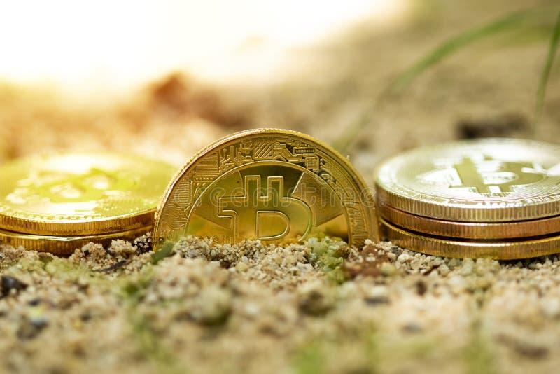 Guld- bitcoin på sanden arkivbilder