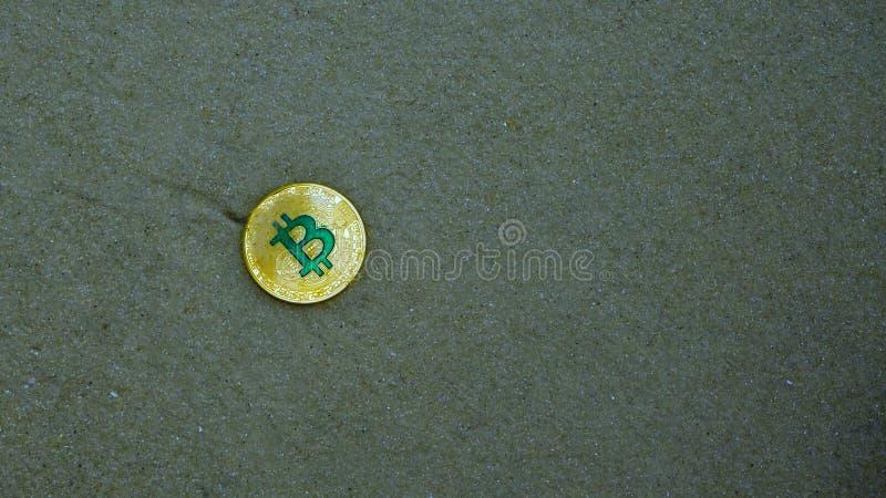 Guld- bitcoin på stranden arkivbild