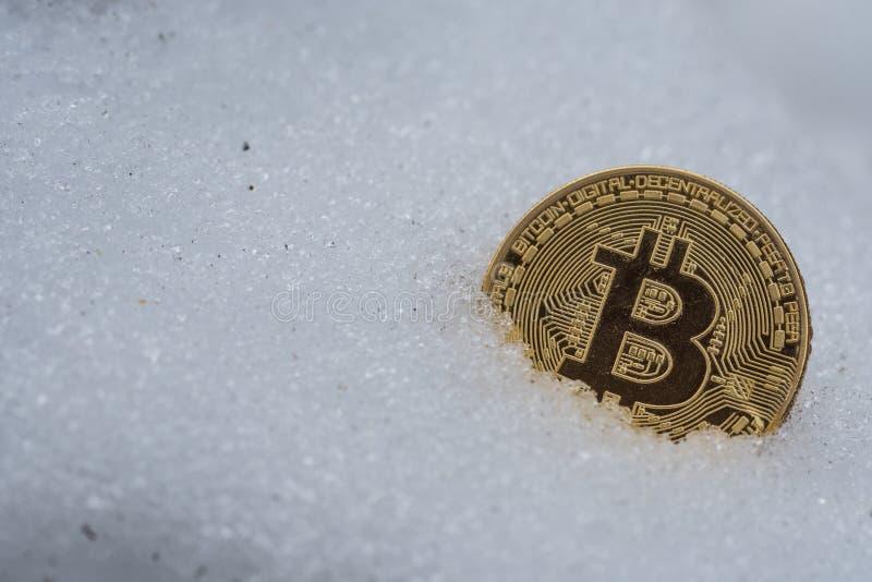 Guld- bitcoinmynt i snö arkivbild