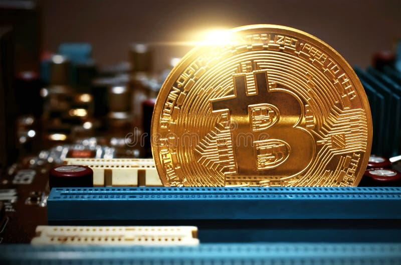 guld- bitcoinmynt på moderkortet royaltyfri fotografi
