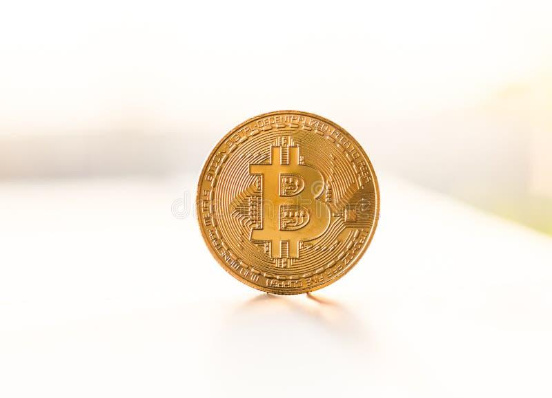 Guld- bitcoinmynt som förläggas på vit bakgrund i ljuset av solnedgången Faktiskt valutasymbol royaltyfri bild