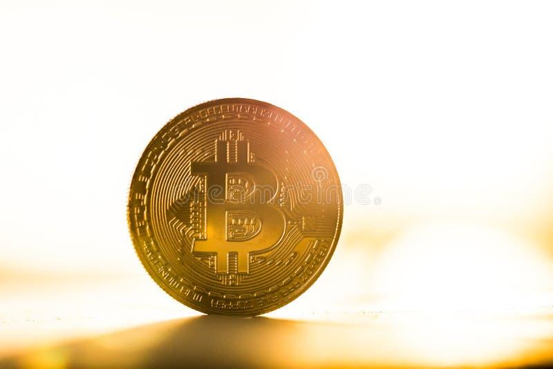Guld- bitcoinmynt som förläggas på vit bakgrund i ljuset av solnedgången Faktiskt valutasymbol royaltyfria bilder