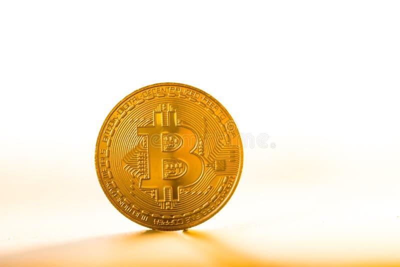 Guld- bitcoinmynt som förläggas på vit bakgrund i ljuset av solnedgången Faktiskt valutasymbol arkivfoto