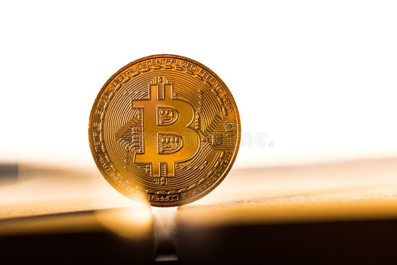 Guld- bitcoinmynt som förläggas på vit bakgrund i ljuset av solnedgången Faktiskt valutasymbol royaltyfri foto