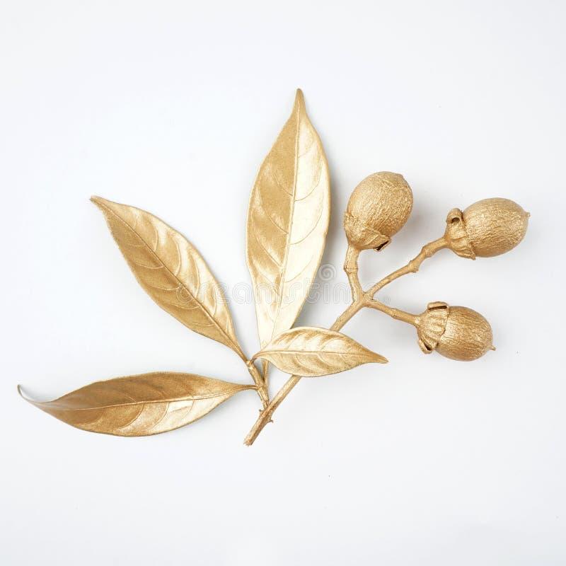 Guld- blad- och fruktdesignbeståndsdelar Garneringbeståndsdelar för inbjudan, bröllopkort, valentindag, hälsningkort isolerat royaltyfri foto