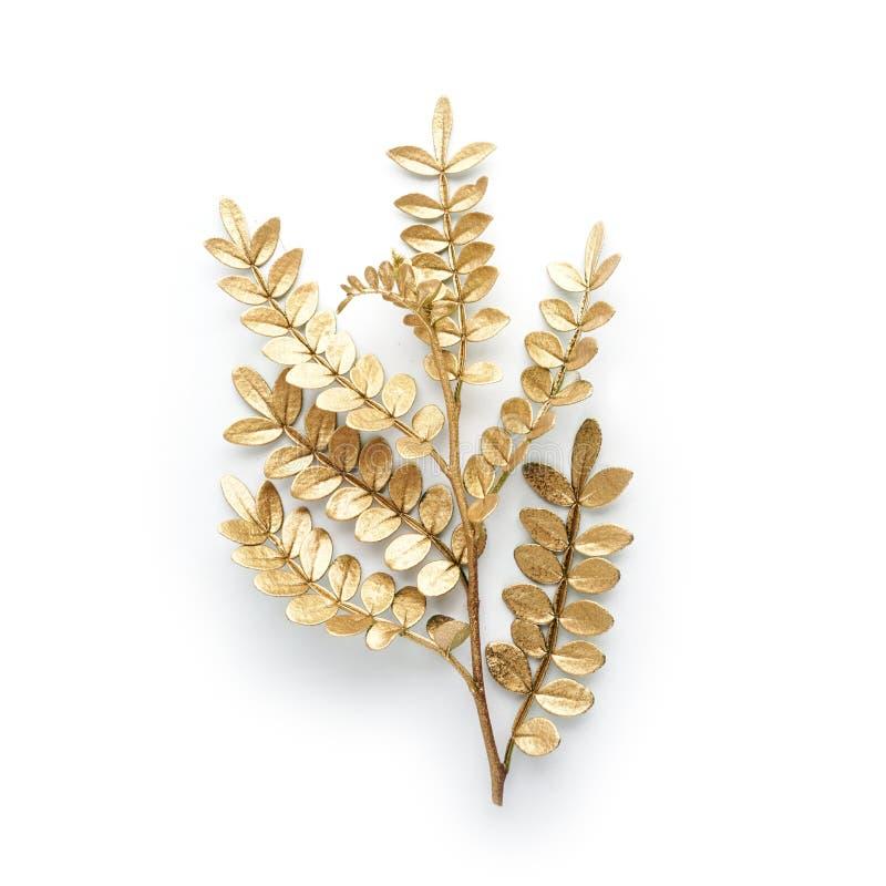 Guld- bladdesignbeståndsdelar Garneringbeståndsdelar för inbjudan, bröllopkort, valentindag, hälsningkort Isolerat på vit royaltyfri foto